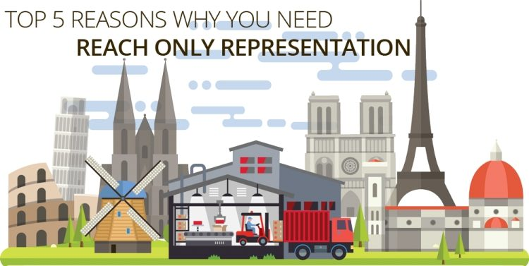 Top 5 reasons foreign companies need reach only representation