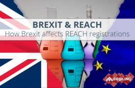 Effect of Brexit on REACH registrations & Only Representation