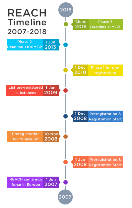 REACH regulation timeline for action