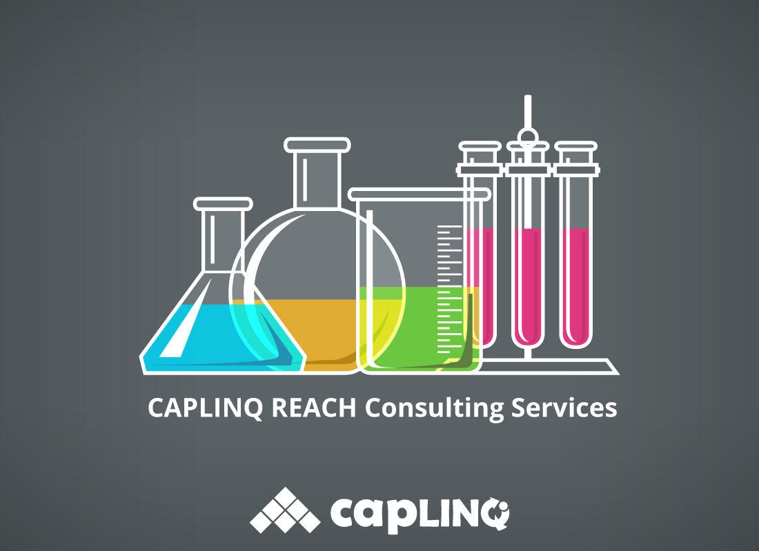 How You Can Benefit From CAPLINQ REACH Consulting Services