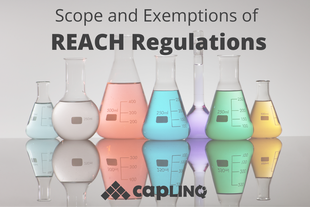 Scope and Exemptions of REACH Regulations in Italy